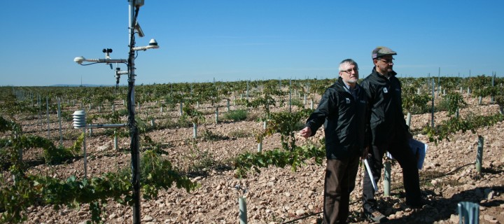 Proyecto Misión Posible para agua de La Mancha, tecnología para una agricultura 3.0 en las Tablas de Daimiel