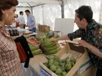 Proyecto Farm Inc, para fortalecer la competitividad de las pymes agrícolas