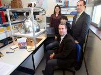 Patentan el primer sistema que permite en pocos minutos identificar variedades y clones de vid