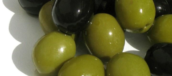 La co-digestión de subproductos de la aceituna y lodos para la producción de biogás