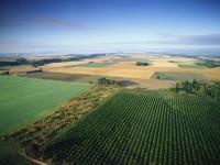 Nuevo procedimiento para comprobar que los agricultores cumplen con los requisitos para recibir subvenciones