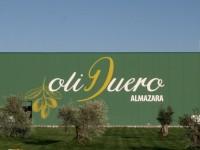Grupo Matarromera, una de las mejores pymes españolas en innovación