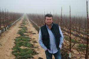 La plantación de almendro en superintensivo, una alternativa real