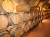 Nueva metodología para elaborar vino más rápido y con menor coste