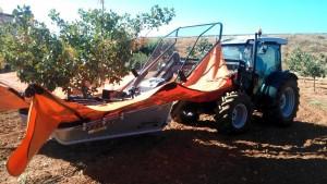 Para la recolección, se han tenido que hacer modificaciones en los vibradores, pues descortezaban los pistacheros y se secaban.