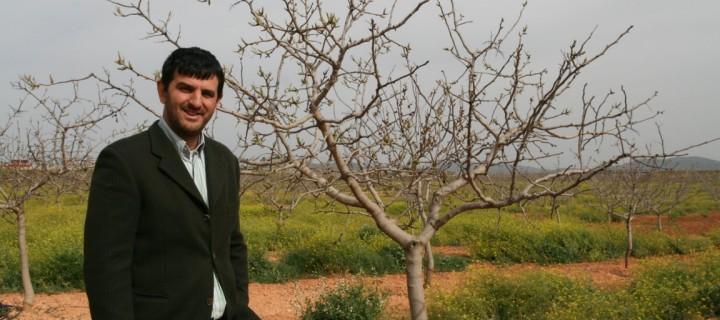 El pistachero, un cultivo con muchas posibilidades en el campo manchego