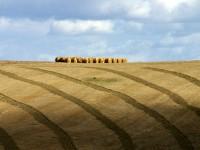 Bruselas adopta el Plan Nacional de Desarrollo Rural y los PDRs de Aragón, La Rioja y País Vasco