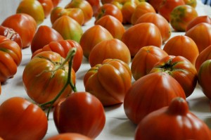 tomates (FILEminimizer)