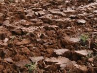 Nuevas formas de manejar el suelo
