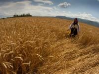 Emplear el Feader para financiar préstamos y lograr los objetivos del Desarrollo Rural