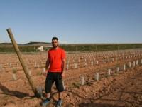 Rentabilidad basada en la gestión de grandes producciones en fruta de hueso