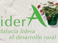 """La Consejería de Agricultura de Andalucía reitera su """"apoyo incondicional"""" a los Grupos de Desarrollo Rural con nuevos fondos para el programa LíderA"""