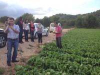 Murcia participa en un proyecto para garantizar la seguridad alimentaria