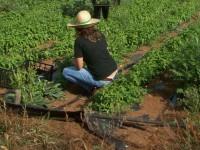 El Magrama resalta el protagonismo de los jóvenes en las políticas de desarrollo rural