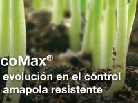 PicoMax, la nueva solución de Basf para el control de la amapola resistente en cereales