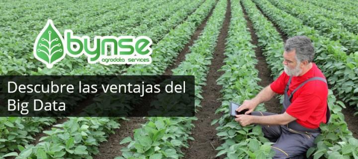Dinsa presentará la primera Big Data para agricultura en Fruit Attraction
