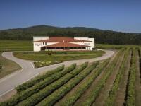 Terras Gauda y Seresco, pioneros en la tecnologización de la viticultura de precisión