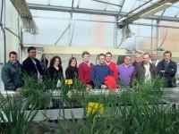 La empresa de semillas Agrovegetal recibe el sello Pyme Innovadora