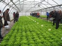 Navarra participa en cuatro nuevos proyectos europeos para el uso de nuevas tecnologías en el ámbito rural
