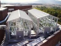 Minimizar los efectos del cambio climático en la variedad Tempranillo