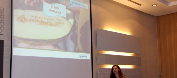 Syngenta presenta sus soluciones para el sector productor de melón de La Mancha