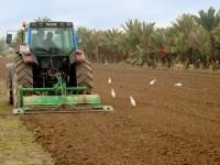 La Comunidad Valenciana vuelve a convocar ayudas para incorporar a jóvenes agricultores