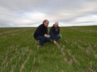 El paso de secano a regadío en cultivos en siembra directa en Huesca