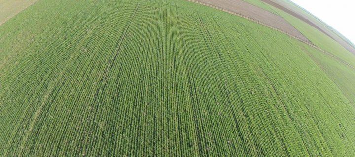 UNVEX ECO-AGRO abordará las aplicaciones agrícolas de los drones