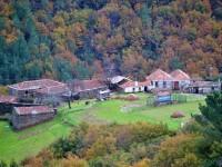 El PDR de Galicia 2014-2020 apuesta por la huerta y la agricultura ecológica