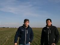 Agricón, siembra directa con la tecnología más puntera
