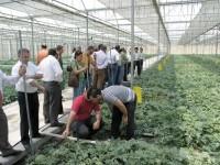 El Magrama ultima un Real Decreto de ayudas a la creación de grupos operativos para la innovación y sostenibilidad agrícola