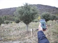 Una app para gestionar toda la información sobre las plantaciones truferas