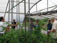En marcha la red Sektorea Saretzen que une investigadores y agentes del sector agroalimentario vasco
