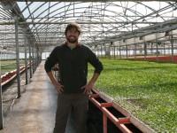 Semillero JM Escolar, 10.000 metros cuadrados de hortícolas en invernadero