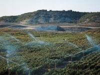 El Gobierno Foral de Navarra elevará un 40% las ayudas a jóvenes agricultores
