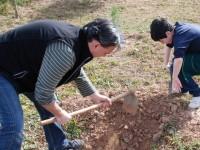 El Consell valenciano incentivará con 40 millones de euros la instalación de 850 jóvenes agricultores