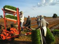 El Magrama publica las bases reguladoras de ayudas a programas de formación en el medio rural