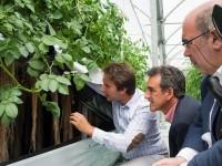 El Gobierno de Cantabria apoya un nuevo modelo de producción de siembra de patata en el aire