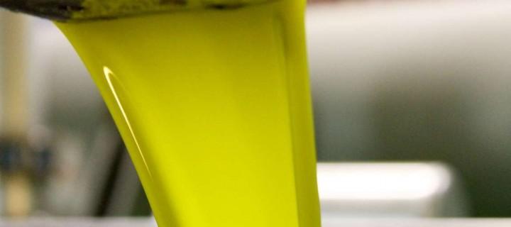 Oleostepa se une a la investigación para encontrar nuevos métodos en el control del aceite de oliva