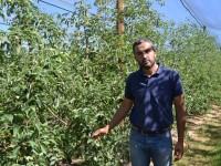 Nufri, cultivando una manzana de calidad con sello patrio