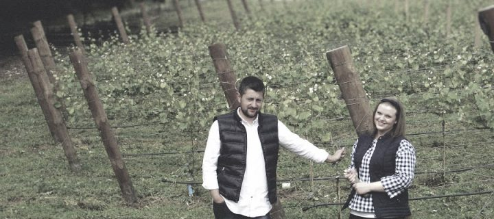 Noelia Bebelia, viticultura de precisión con herramientas online