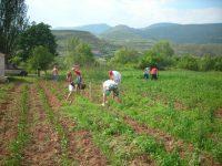 Convocadas las ayudas para programas plurirregionales de formación dirigidos a los profesionales del medio rural para 2017