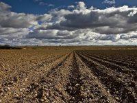 Incorporación de las energías limpias al sector del riego para mitigar del cambio climático