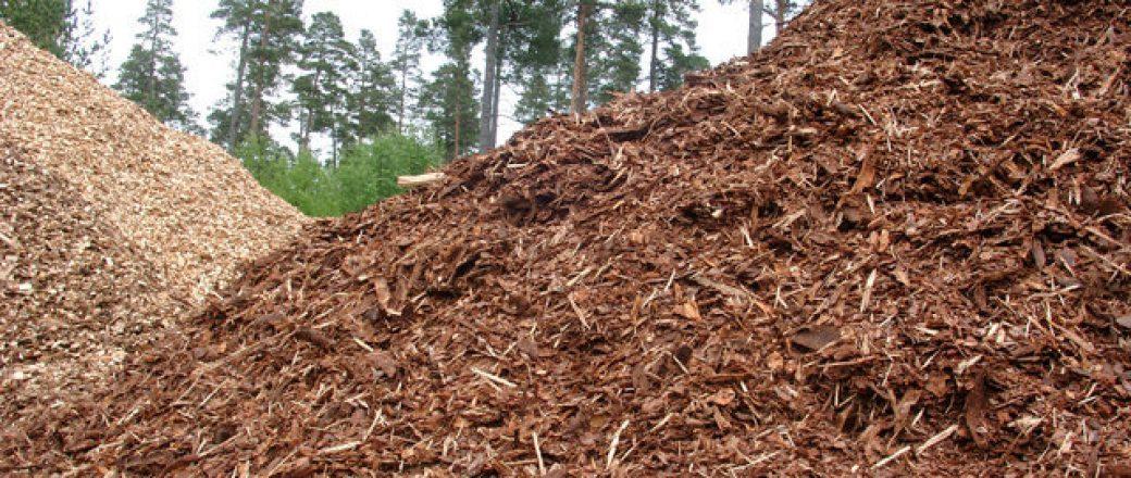 Casi 600 toneladas de matorral gallego en zonas de alto riesgo de incendio convertidas en pellet