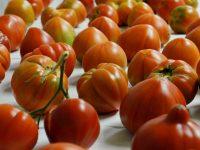 Cómo recuperar el sabor tradicional del tomate