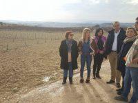 Murcia abonará 11 millones de euros en ayudas a la creación de empresas e inversiones en explotaciones de jóvenes agricultores en 2017