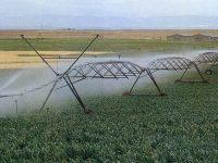 Los cultivos de regadío contribuyen a la lucha contra el cambio climático