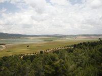 Apoyo a la toma de decisiones para la mejora de la gestión en explotaciones agroforestales