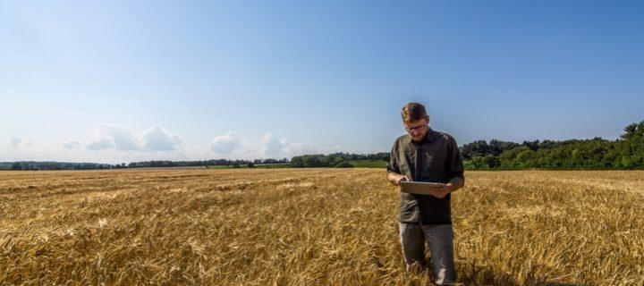 MyYara, la nueva plataforma digital que integra todas las herramientas de agricultura de precisión de Yara