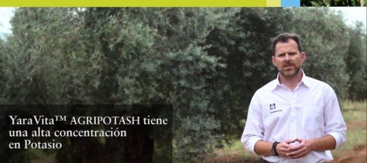 Yara Escucha, una campaña centrada en las necesidades de los agricultores